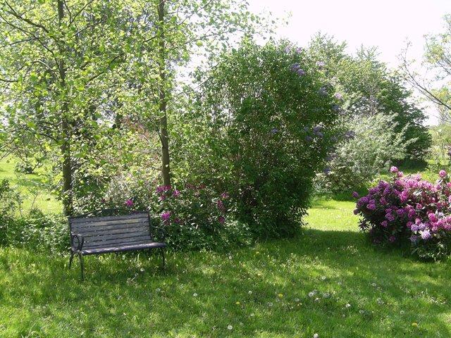 9 6 Garten
